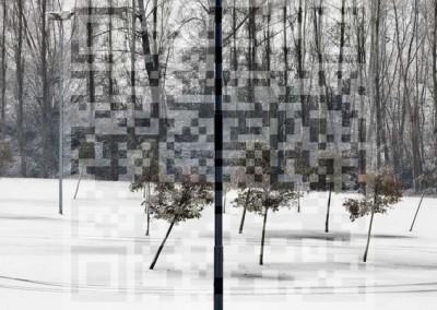 paesaggi-complessi-9247