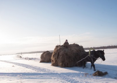Mezensky restricted area. Arkhangelsk Oblast. On the iced bed of Kuloy river. Men retrieve the hay and load it on sledges pulled by a horse.